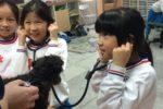 實際用聽診器聽聽看小狗的呼吸